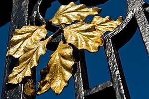 Blad goud bladeren op stalen hek amsterdam